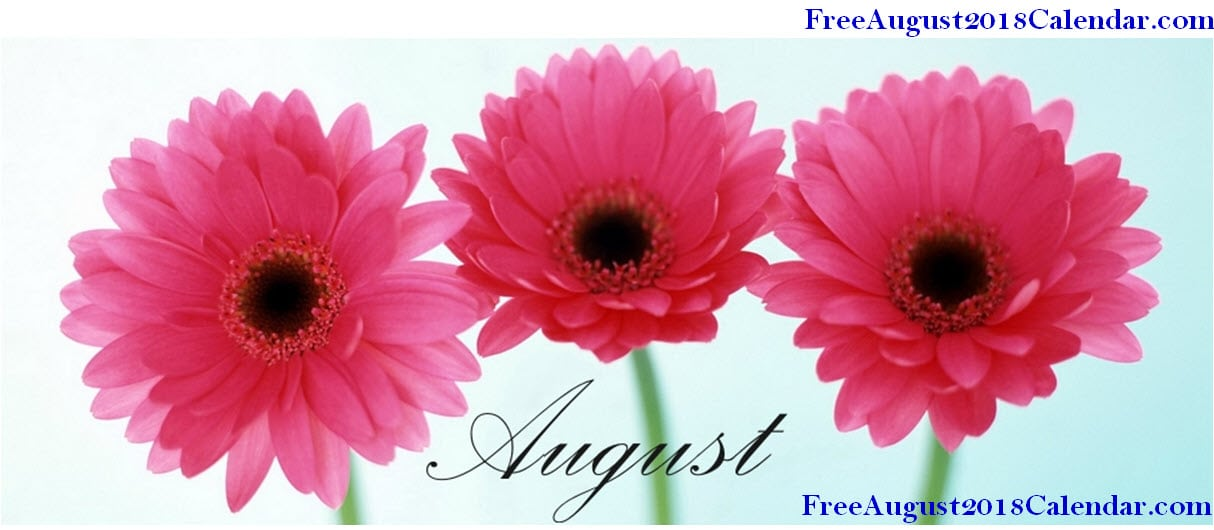 August Flowers Images