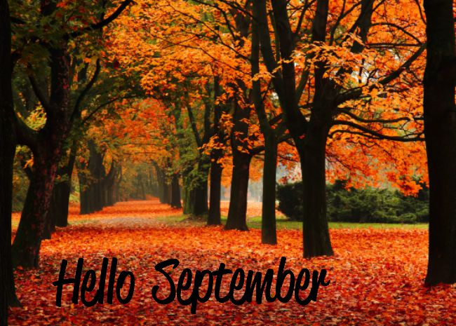 Hello September Flower Images