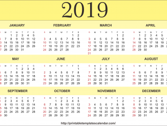 Free Printable 2019 One Page Calendar