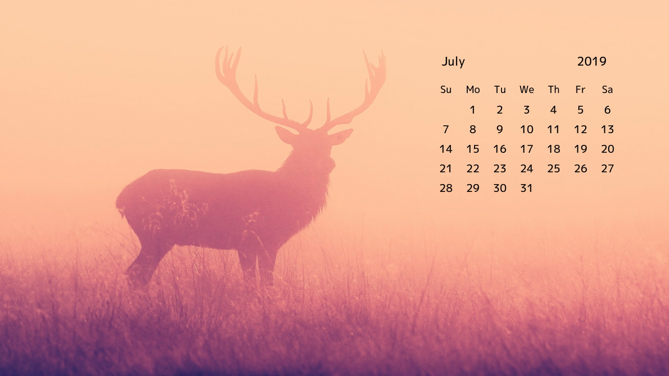 July 2019 Calendar HD Wallpaper