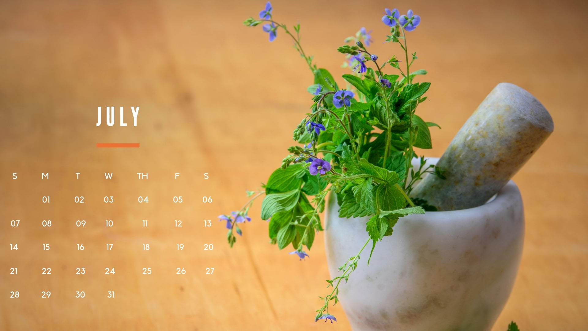 July 2019 Calendar Wallpaper
