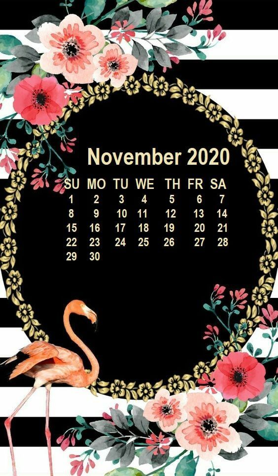 November 2020 Calendar Wallpaper for iPhone
